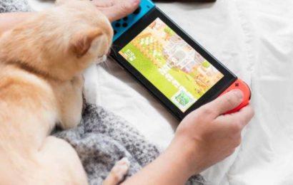 Nintendo Switch : comment activer le contrôle parental?